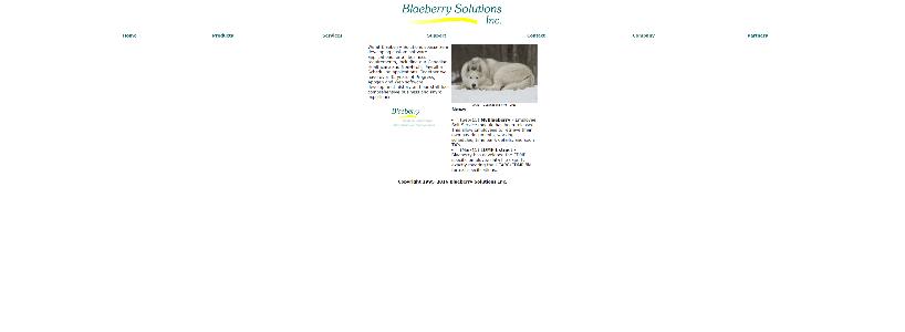 BLAEBERRY.COM