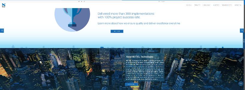 NETSOLTECH.COM