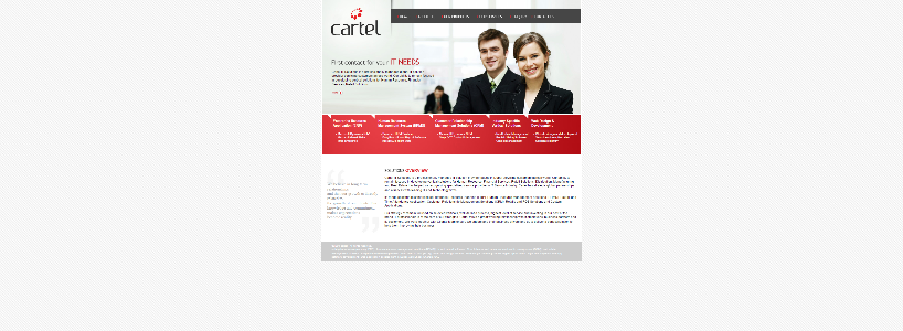 CARTELSOLUTIONS.COM