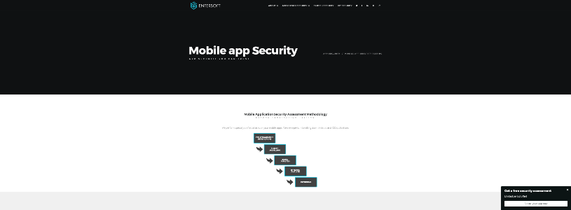 ENTERSOFTSECURITY