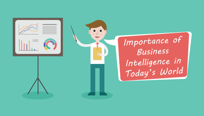 Important Functions of Business Intelligence Software